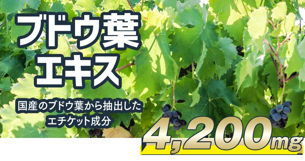 ブドウ葉エキスー国産のブドウ葉から抽出したエチケット成分4,200mg